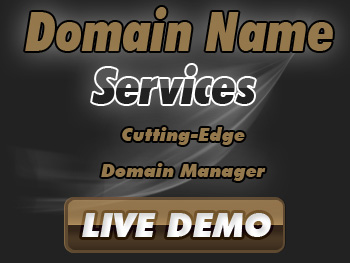 Economical domain name registration service providers